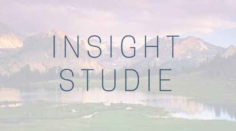 Insight-studie